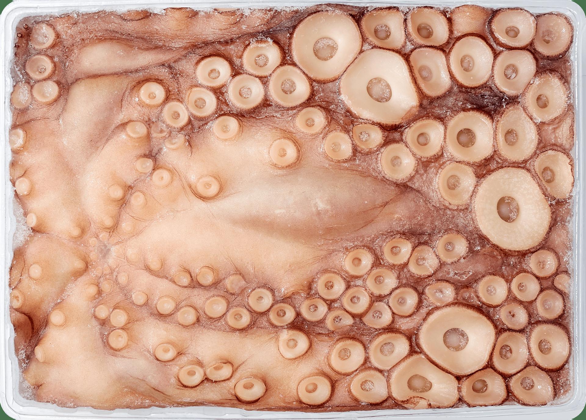 Polvo Nacional - 4-5kg